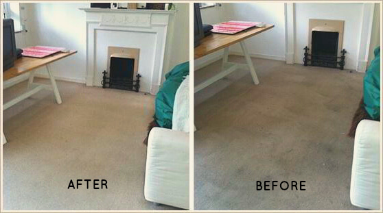 Thorough Carpet Cleaning - Before and After